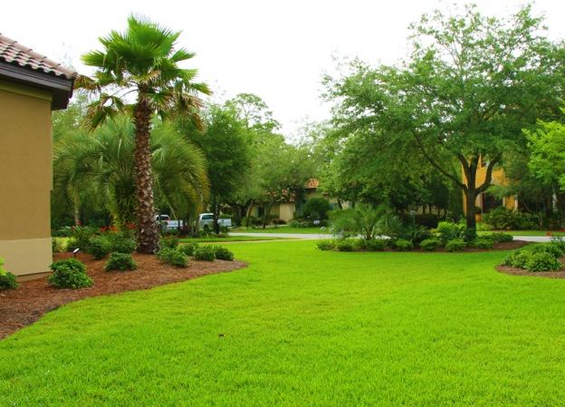 florida-professional-irrigation-services